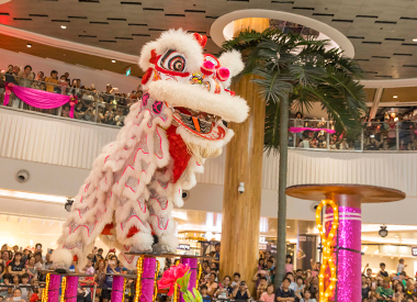 Lion Dance Performances